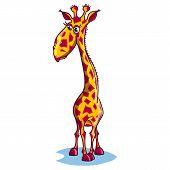 Image of a sad cartoon giraffe.