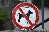 No Dogs Allowed! Old prohibition sign on the entrance gate in Berlin, Germany.