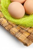 Brown easter eggs are on wattled square plate with sisal green fibre, isolated on white