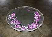 The bowl of water and flower petals Frangipane
