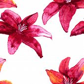 Seamless pattern with red lily flowers