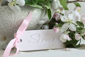 Closeup apple blossom flowers in vase with gift card