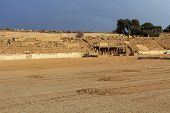 Stage of the Hippodrome in Caesarea Maritima National Park