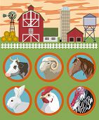 picture of cattle breeding  - breeding of farm animals vector color illustration - JPG