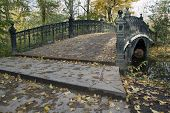 Bridge In Vondelpark