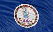 3D Virginia  Flag