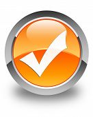 Validate Icon Glossy Orange Round Button