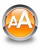 Font Size Icon Glossy Orange Round Button