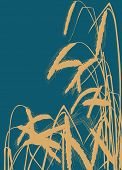illustration with wheat silhouettes on blue background