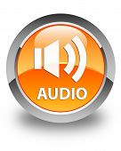 Audio Glossy Orange Round Button