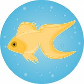 gold fish in water bubbles aqua