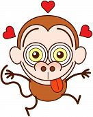 Funny monkey feeling madly in love