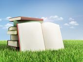 Stack Of Book And Open Book On The Grass.