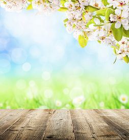 stock photo of spring-weather  - Spring abstract background with wooden planks and blurry background - JPG