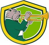 stock photo of trumpets  - Illustration of a bulldog in a suit blowing trumpet viewed from the side set inside shield crest on isolated background done in cartoon style - JPG