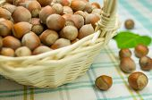 image of cobnuts  - Hazelnuts in a wicker basket on the table - JPG