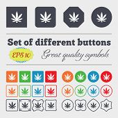 picture of cannabis  - Cannabis leaf icon sign Big set of colorful diverse high - JPG