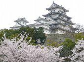 Japanese Castle Himeji