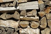 pic of firewood  - Group of cut logs for firewood - JPG