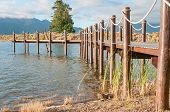 picture of jetties  - Repeating pattern of wooden poles in a jetty in a dam near Sir Lowrys Pass - JPG