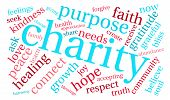 picture of word charity  - Charity word cloud on a white background - JPG