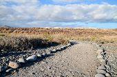 image of dirt road  - Long Straight Dirt Desert Road disappears into the Horizon - JPG