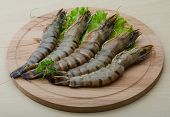 image of tiger prawn  - Raw tiger shrimps on the wood board - JPG