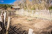 stock photo of risen  - Small vegetable garden with risen beds in the fenced backyard - JPG
