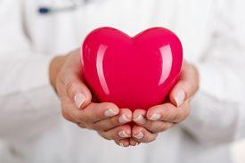 pic of hand heart  - Female doctors - JPG