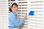 Maid Cleaning Shutters