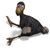 stock photo of dodo  - very funny toon Dodo - JPG