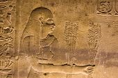 stock photo of horus  - Ancient egyptian stone carving of a priestess presenting wheat crop harvest to the gods - JPG