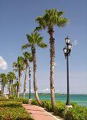 Avenida Caribe