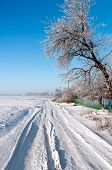 Silent Russian Village In The Winter