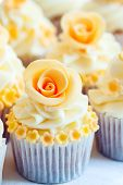 foto of sugarpaste  - Cup cakes decorated with yellow sugar roses - JPG