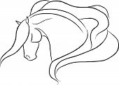 Dramatic Horse Head Vector