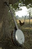 foto of bluegrass  - five string banjo resting against an oak tree in a farmyard setting - JPG