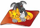 Vector Schnauzer miniatura cachorro e gato britânico deitado sobre o tapete em uníssono