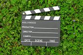 Cinema clapper board on green grass among flowering small purple flowers