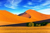 Sunset in the desert. Orange, red and yellow dunes of the Namib desert. The concept of extreme and  poster