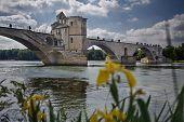 Avignon's Bridge
