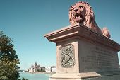 Lion Statue Guarding The Blue Danube And The Hungarian Parliament Building