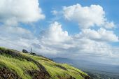 green hills south point hawaii