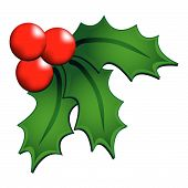 picture of holly  - Christmas holly ornament isolated over white background - JPG