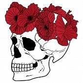 Skull And Wreath Of Poppies