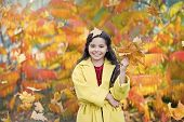 Every Girl Loves To Be Stylish. Little Girl Happy Smiling With Autumn Leaves. Little Fashionista In  poster