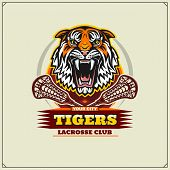 Tigerr10.eps poster