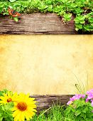 Summer background with old wooden plank, grass and green leaves
