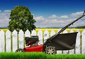Lawn mower mows lawn. Is isolated. on a white background poster