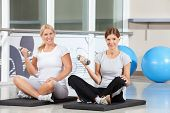 Two happy women doing dumbbell exercises on gym mats in fitness center